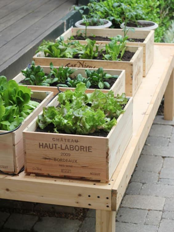 Smart patio garden ideas