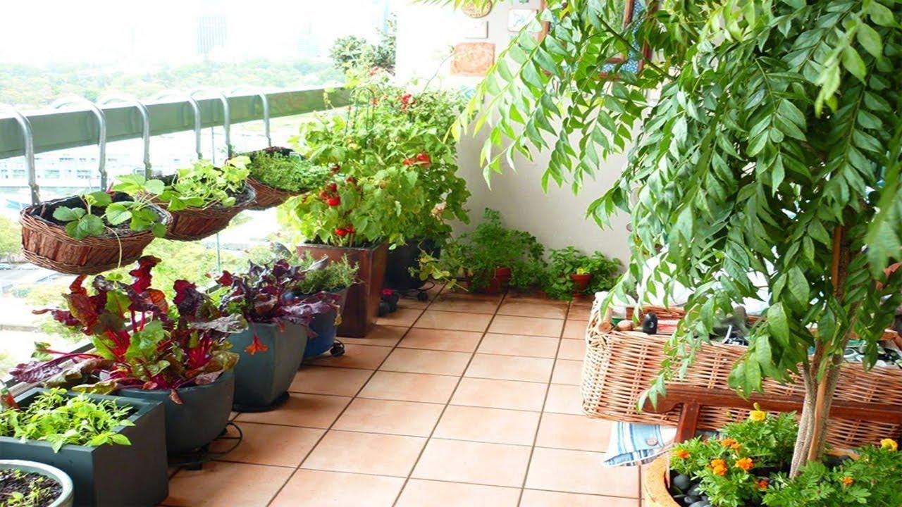Patio gardens  83