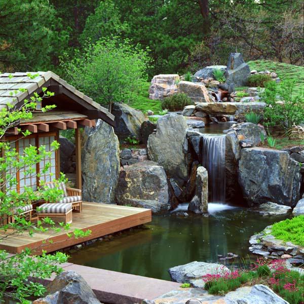 pond designs  50