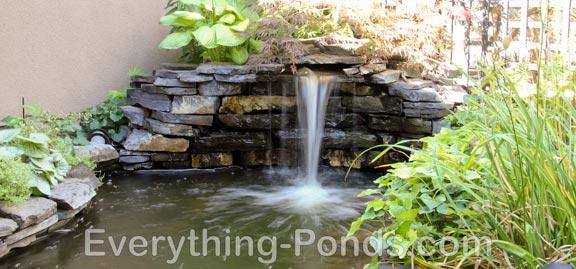 pond designs  80