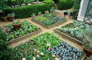 Raised Bed Garden  89