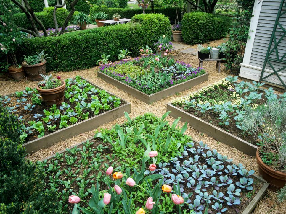 Raised Bed Garden – A Soil Saviour Technique