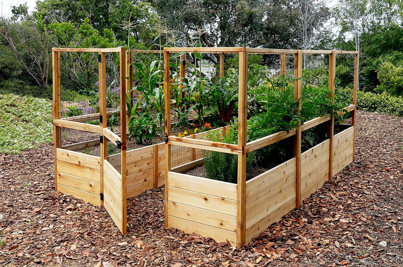 raised garden bed  71