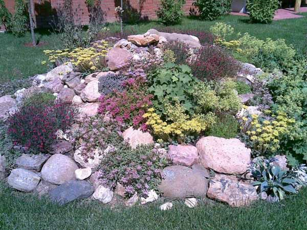 rock garden ideas  41