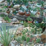 Enhance the looks of your garden with rock garden ideas
