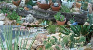 rock garden ideas  69
