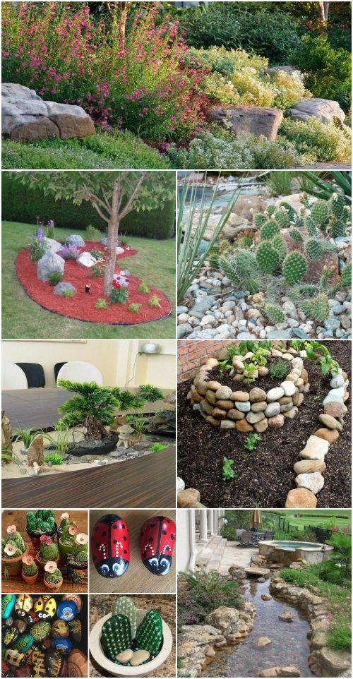 Rock Gardens  62