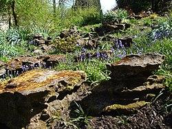 Rock Gardens  68