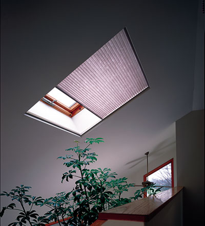 Have massive appealing with the skylight shades