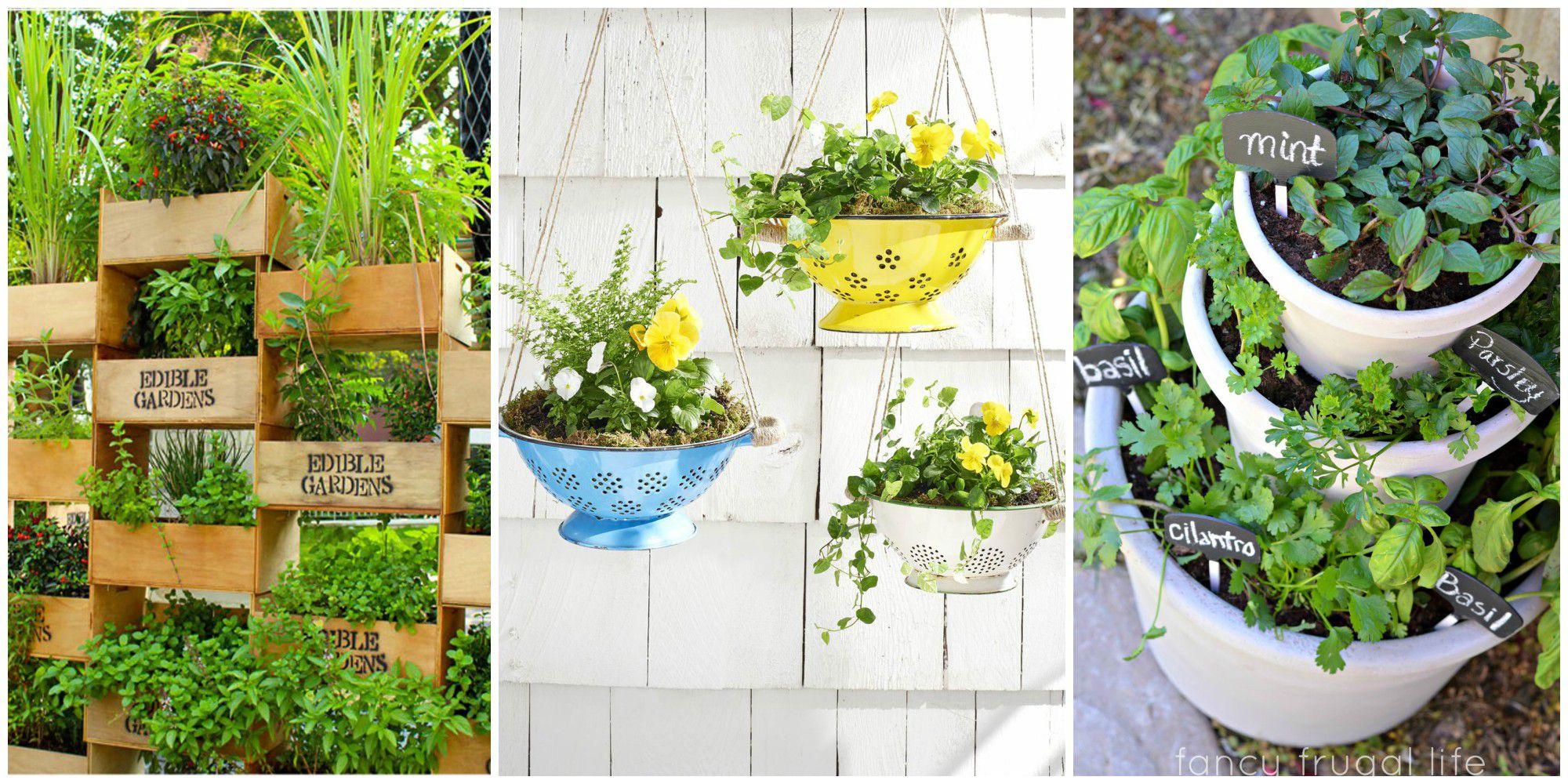 small gardens  23