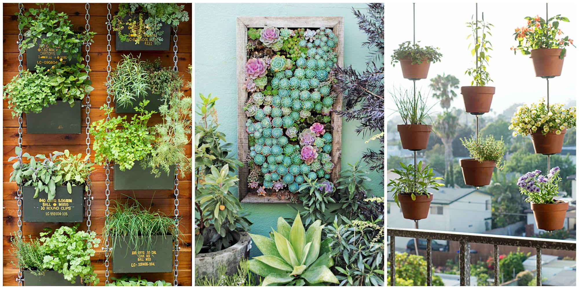 vertical gardening  64