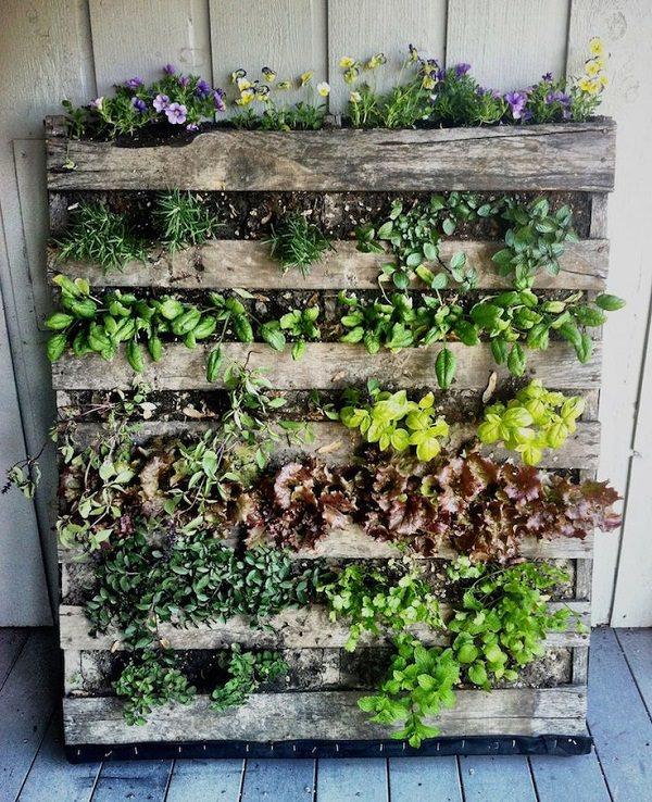 vertical gardening  66