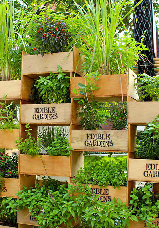 vertical gardening  76