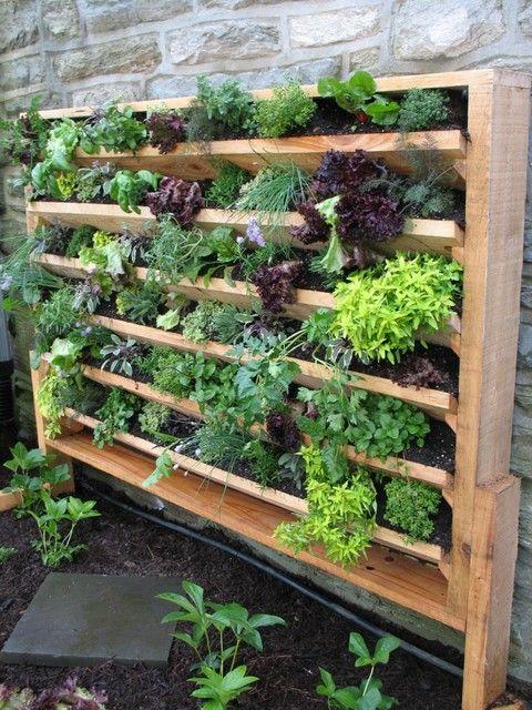vertical gardening 84