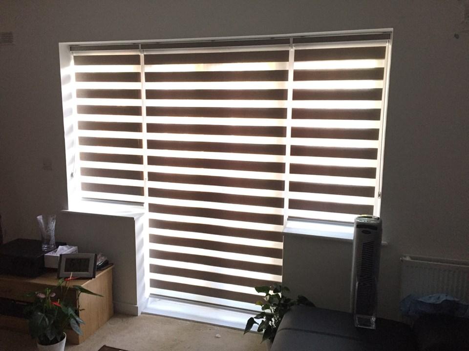 vision blinds  81