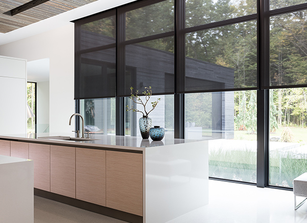Choose trendy windows shades designs for your home