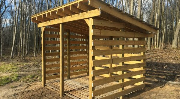 Keep your firewood safe and dry through wood shed plans ...