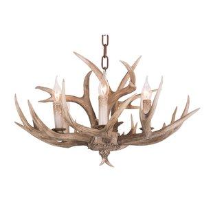 Deer Antler Chandelier | Wayfair
