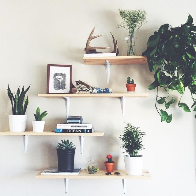 Via uomalibu #UOaroundYou | #UOHome in 2019 | Bedroom, Home Decor, Room