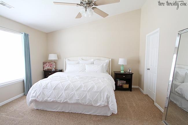 Sherwin Williams Sea Salt - Master Bedroom Wall Color