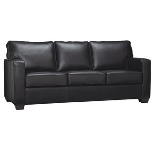 A black leather sofa bed is simply an adorable sofa for any home style