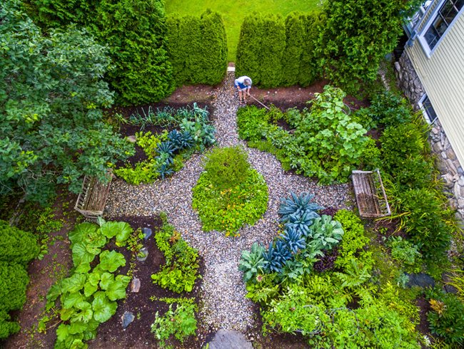 Top Garden Trends for 2019 | Garden Design
