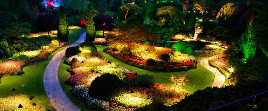 5 Incredible Benefits of Landscape Lighting & Garden Lights