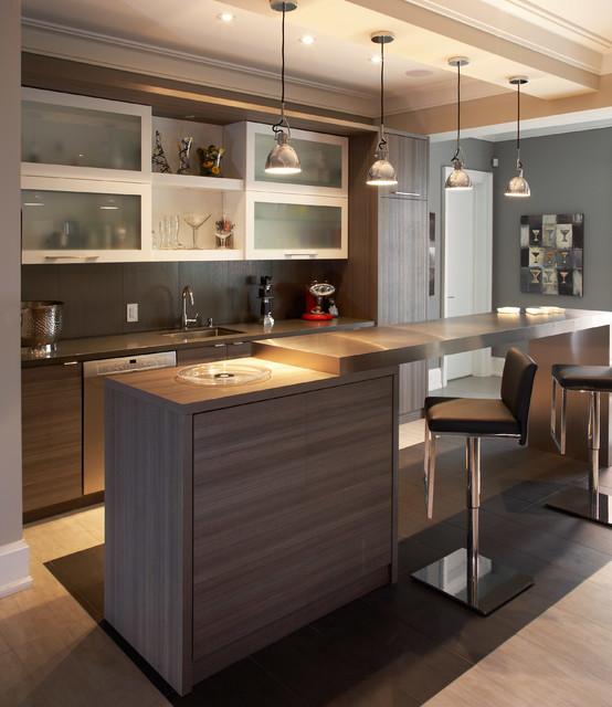 Arjay Residence - Contemporary - Home Bar - Toronto - by Dochia