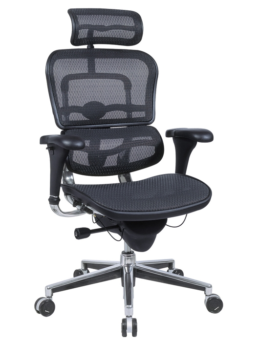 Ergohuman Mesh Task Chair w/ Headrest | Discount Office Seating