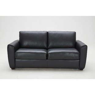 Get the dual purpose of a   leather pull out couch for your living room