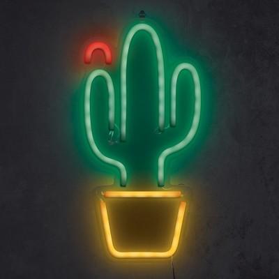 Cactus Flower 16