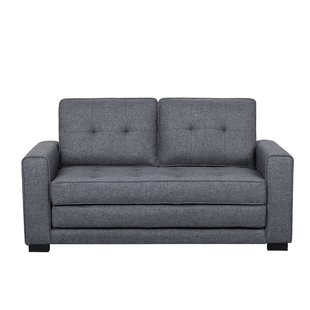 A functional loveseat bed
