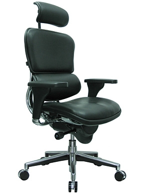 Ergohuman Black Leather High End Office Chair LE9ERG by Eurotech