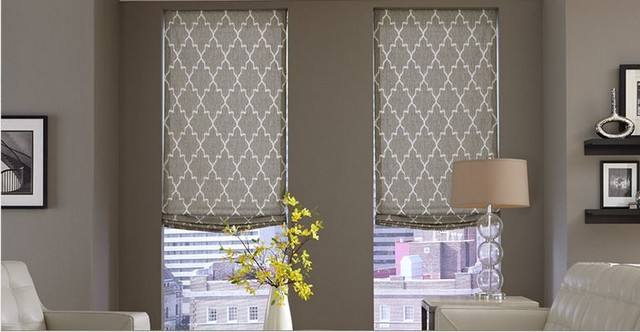 Modern Window Treatments- 3 Day Blinds- Living Room - Modern