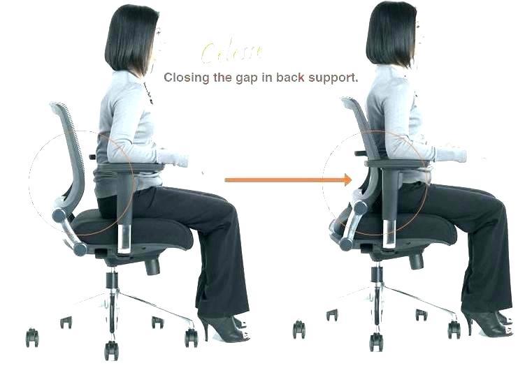 decoration: Office Chair Posture Cushion For Unique 9 Best Ergonomic