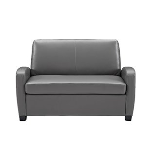 Loveseat With Pull Out Bed | Wayfair