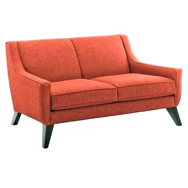 Modern Small Sleeper Loveseat Bed Inspirational For Spaces On Living
