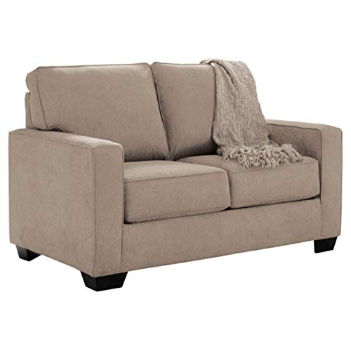 Get A Twin Sofa Bed To Make Up For Your