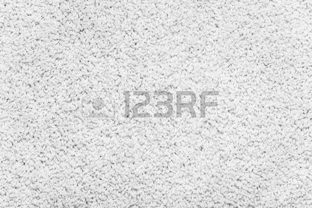 Carpet Texture. White Carpet Background Close Up. Stock Photo