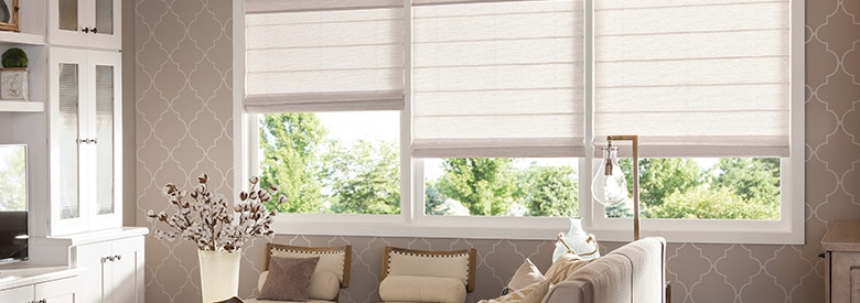 Shop Window Blinds - Buy Window Treatments Shades & Coverings