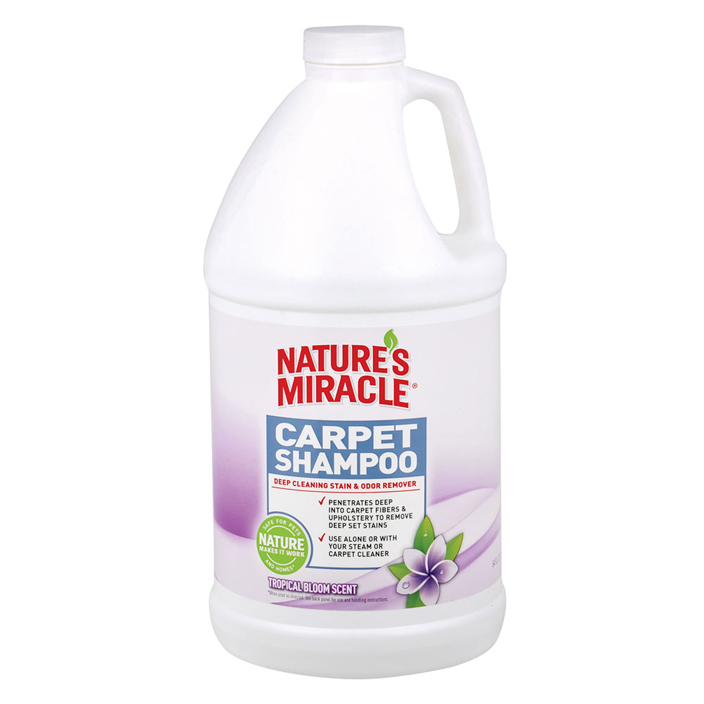 Carpet Shampoo How To Clean A Carpet On Hardwood Floor (Great Guide)