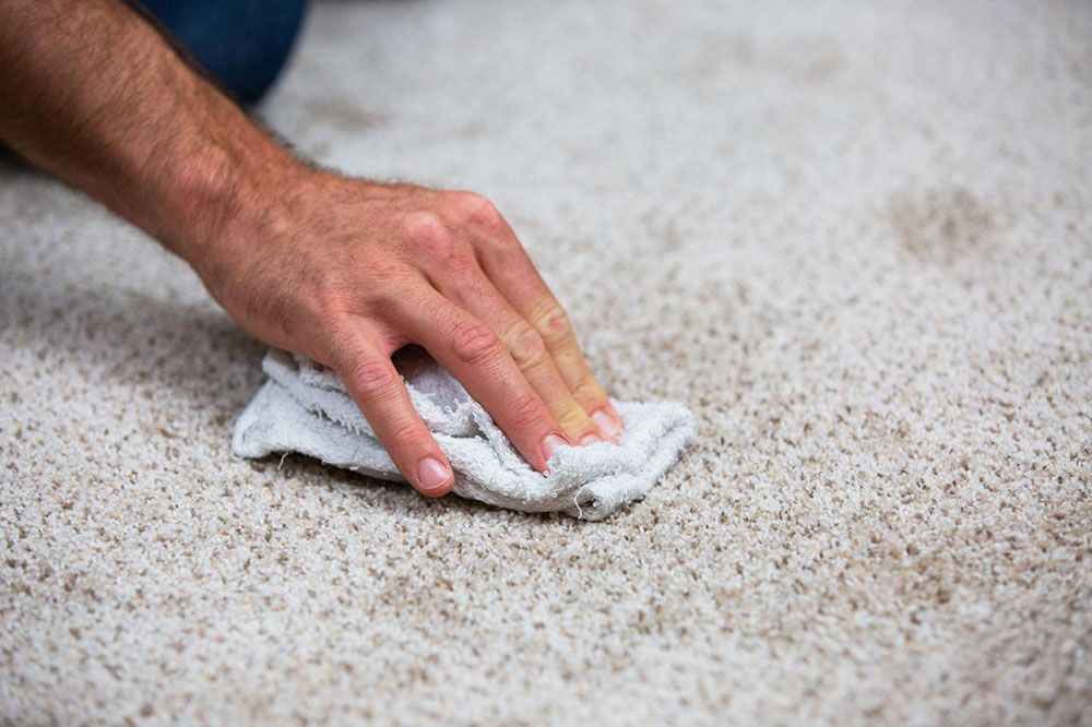 Carpet Cleaner1 How To Clean A Carpet On Hardwood Floor (Great Guide)