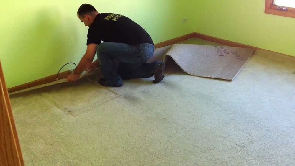 Remove carpet How to remove carpet from wooden floors (quick guide)