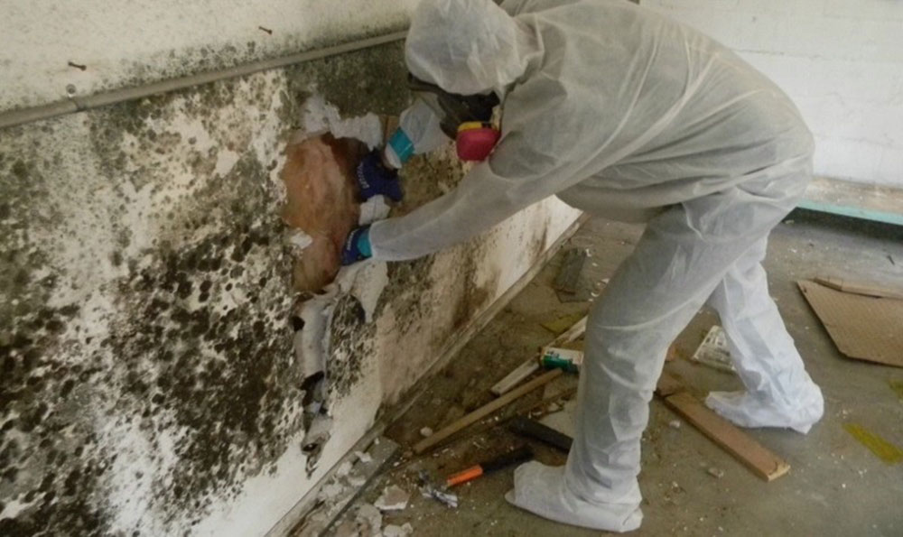 Mold removal How to remove the foam insulation quickly and easily