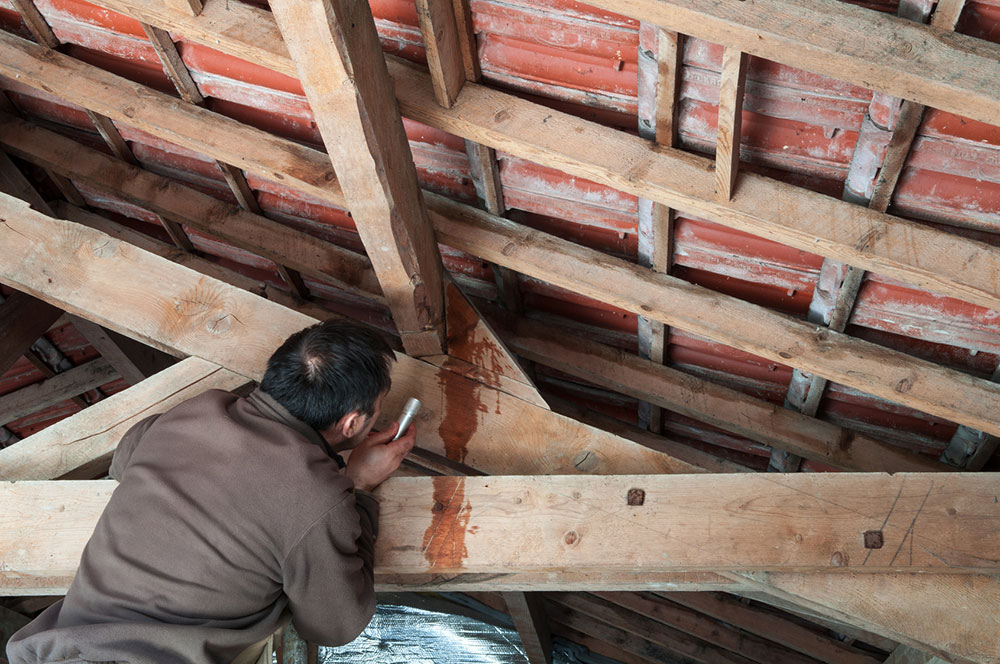 Roof leakage How to fix a leaky roof from the inside (short tips)