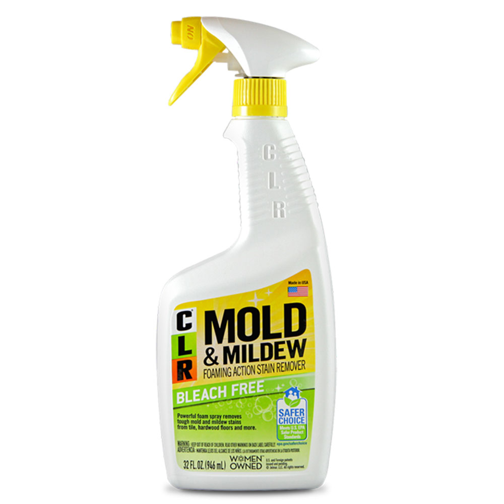 Mold cleaner How to get rid of cellar smell?  Quick tips to get it done