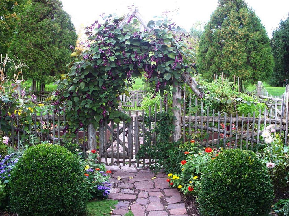 g3-1 ideas for garden fences that are practical and also look good