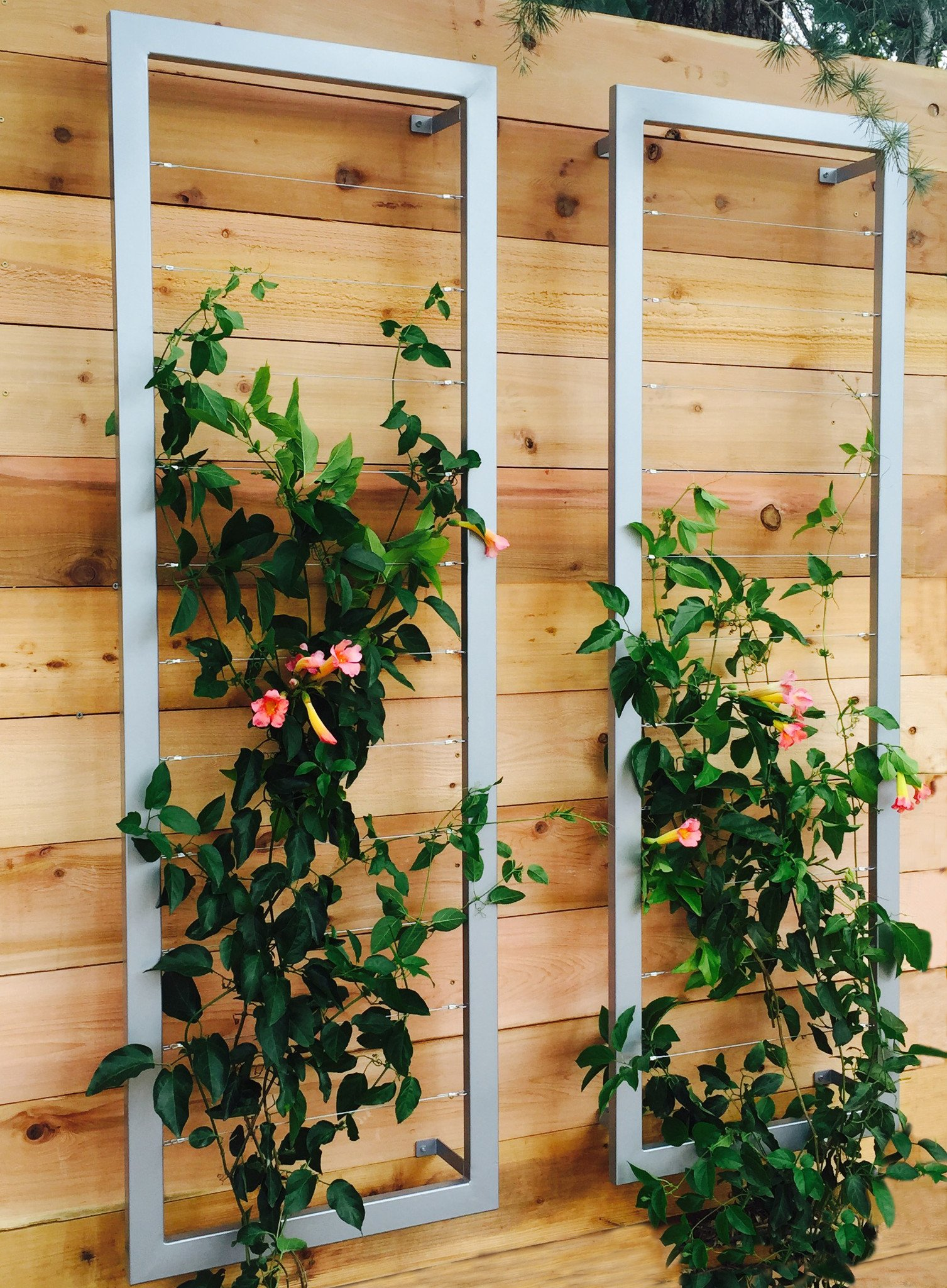 Zinc_2-shot garden gate ideas that are inexpensive and look great