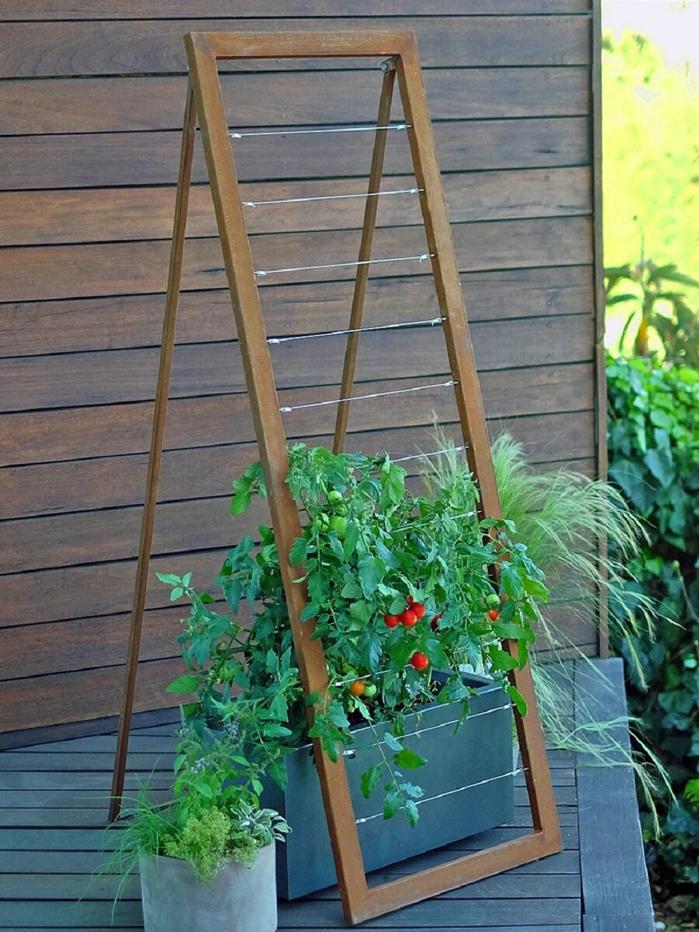 deck_modern_tomato_trellis_Mira_garden-1-1 Ideas for garden guards that are inexpensive and look great
