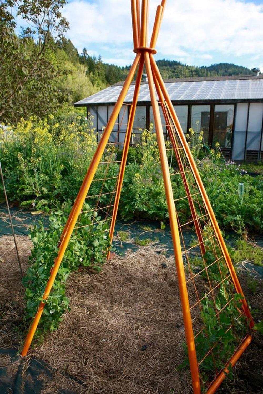 bio_garden_teepee_tipi_trellis ideas for garden trellises that are inexpensive and look great